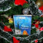 Tărâmul Mistic vol.1- Îngerul Luminii de Alina Cosma-recenzie