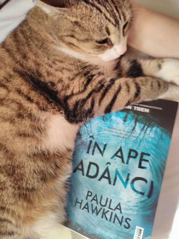 În ape adânci de Paula Hawkins - Editura Trei - recenzie