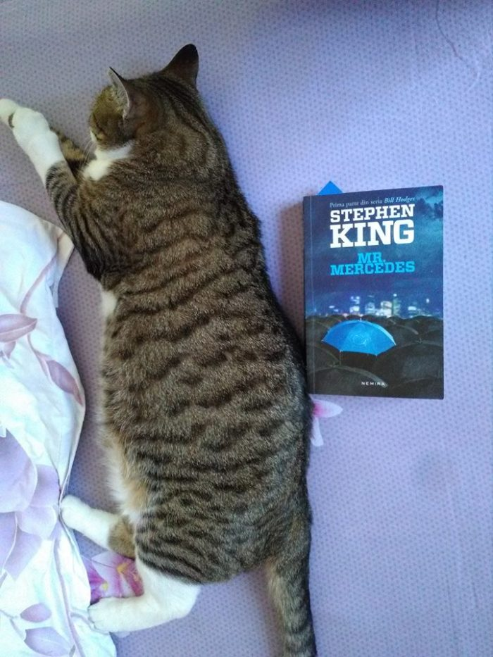 Mr. Mercedes de Stephen King