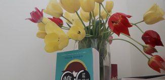 Unde ai dispărut, Bernadette? de Maria Semple-Editura Litera-recenzie