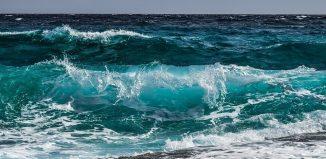 Duel poetic:Bilet spre o mare & Tabloul