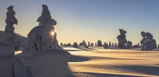 Clopot de ninsoare