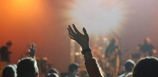 Vise literare-Bananierul vrăjit-De la concert la explozie
