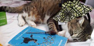 Ucenica vrăjitoare - James Nicol - Editura Rao - recenzie