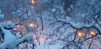 Poveste de Crăciun -Tessa Nadir