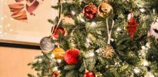 Un Crăciun tradiţional - Lucian-Dragoş Bogdan