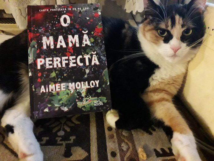 O mamă perfectă