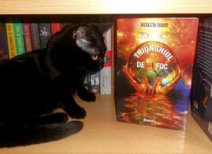 Triunghiul de foc - NicoletaTudor - Librex Publishing