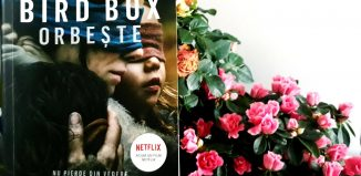 Bird Box. Orbește - Josh Malerman