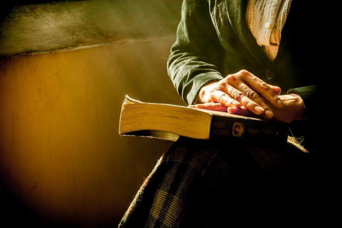 Fragment IX din roman în lucru - Rug pe rugă de Nina Marcu