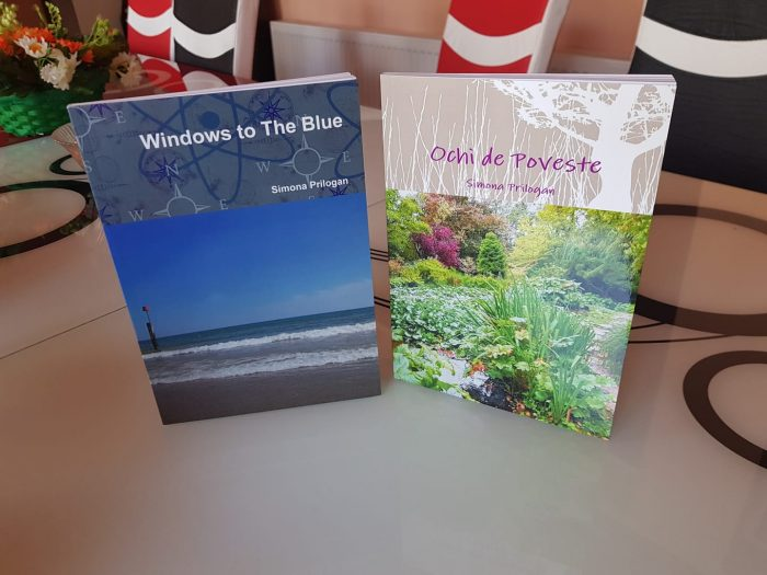 Ochi de poveste - Windows to The Blue - Simona Prilogan