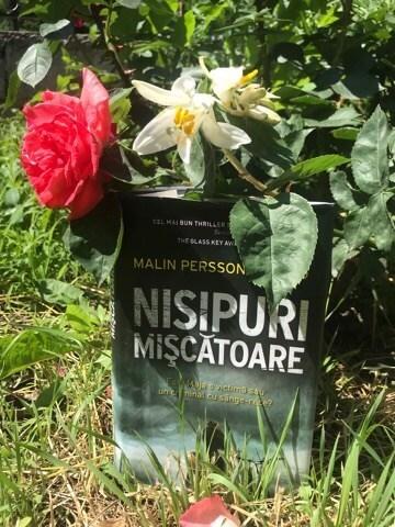 Nisipuri Mișcătoare -Malin Persson Giolito - Editura RAO - recenzie