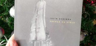 Sacoșa cu stele de Iulia Șchiopu