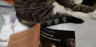 Întâmplări despre niciodată de Teodora Gheorghe