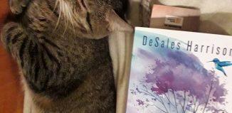Adâncuri sălbatice de DeSales Harrison