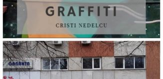 Graffiti Cristi Nedelcu The girl with the broken smile (fragment)