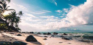 Darul mării