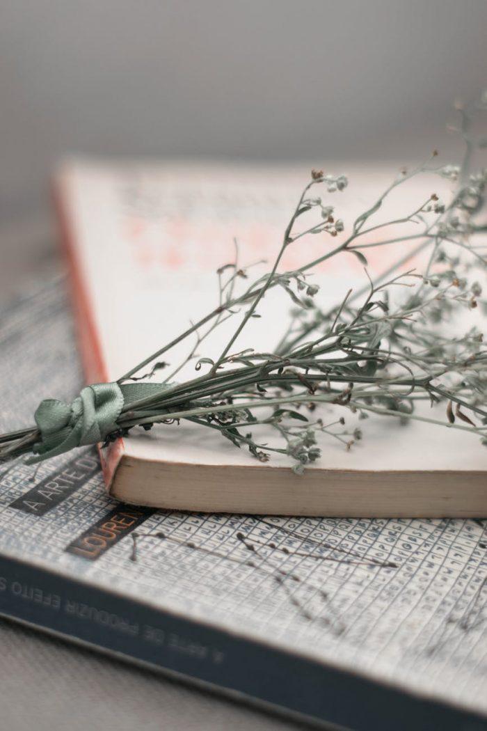 Poezii - Maya Alma - Daniel Vișan-Dimitriu - Daniel Dac - Nina Tărchilă