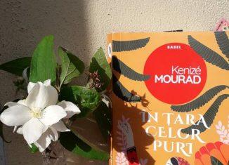 În țara celor puri de Kenizé Mourad