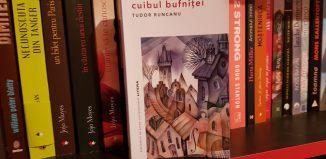 Cuibul bufniței de Tudor Runcanu - Editura Litera