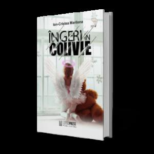 Interviu cu autoarea Ion Cristea Marilena - Literpress Publishing