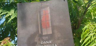 La răsărit de ceață de Dana Nichițelea - Editura Heyday Books - recenzie