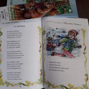 Pluș pentru Martinuș de Ion Cristea Marilena - Literpress Publishing - Povești în versuri pentru copii