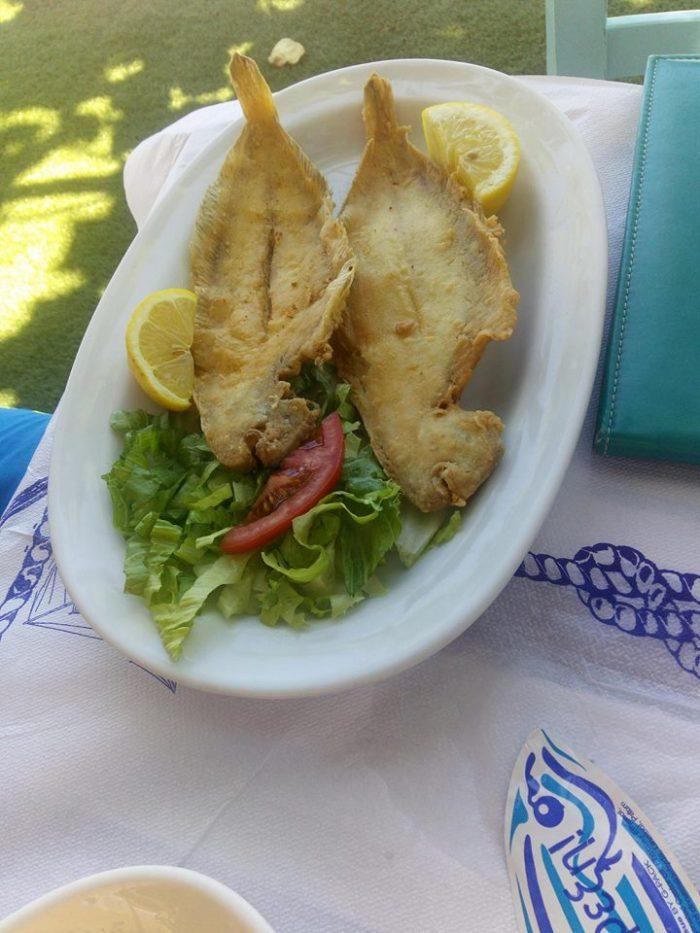 Salată de ton cu orez - Ciorbă cu tăiței - Pește cu mămăligă - Gogoși